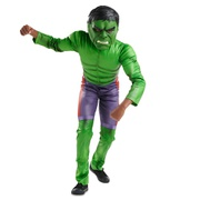 Disney Hulk Costume for Kids