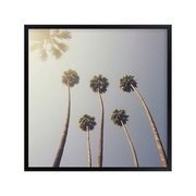 Potterybarn Sunny Palm Trees Wall Art by Minted