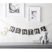 Potterybarn Grey/White Milestone Garland